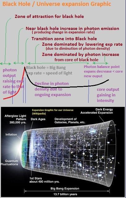 Black Hole dynamics