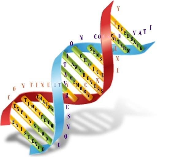 Evolution learning mechanism